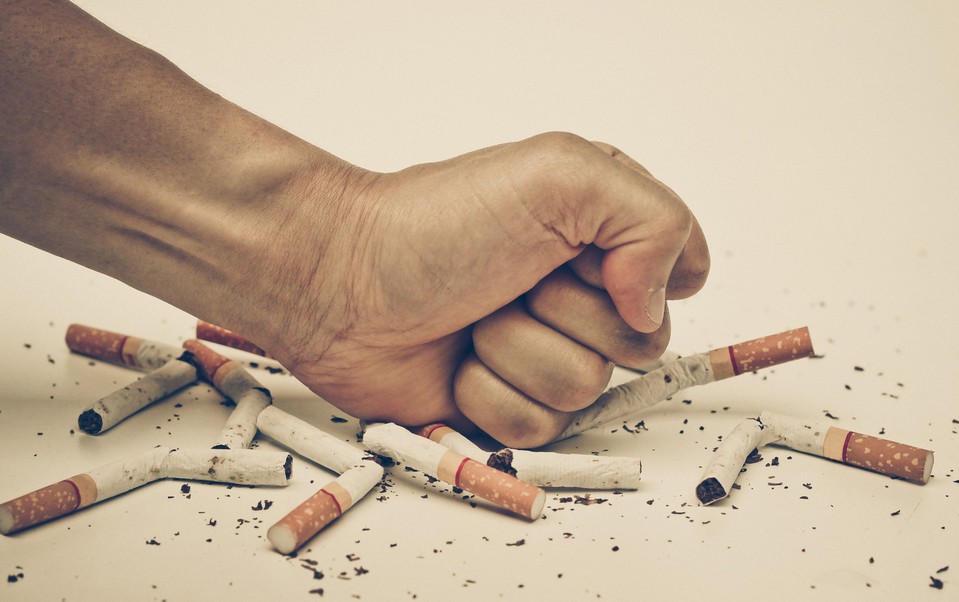 tobacco smoking and great decrease The demand for cigarettes and other tobacco products of price increases caused two million adults to quit smoking and higher taxes reduce tobacco consumption.